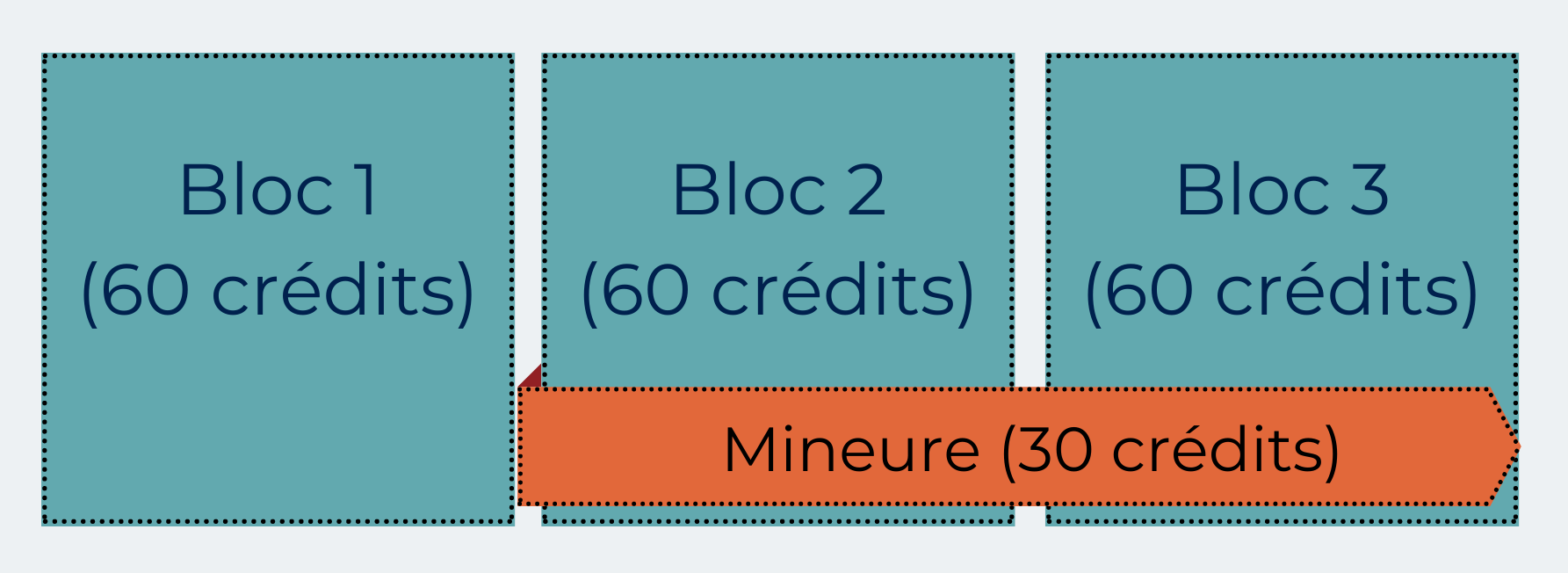 cycle bachelier majeure + mineure.png