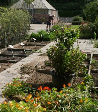 Visite Gratuite Du Jardin Des Plantes Medicinales Uclouvain